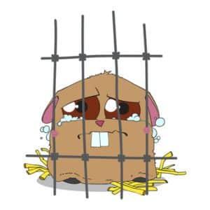 Hamsterkäfig-trauriger-Hamster